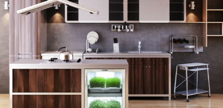 An Automated Home Garden Is Now Reality